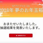 ヨドバシ 福袋 2018