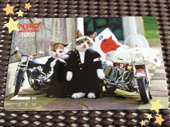 なめ猫免許証